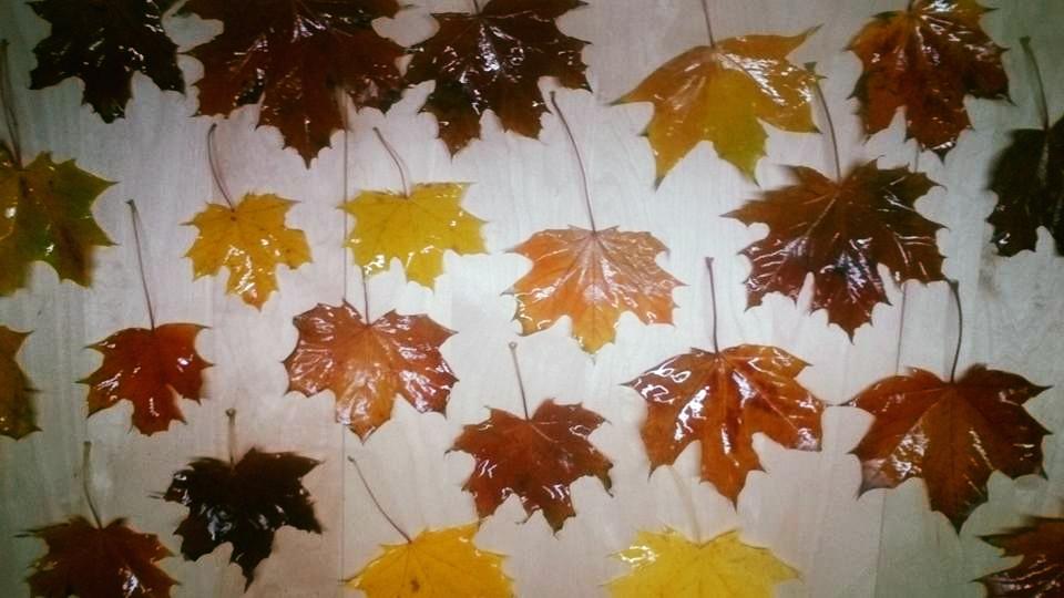 gesammelte Blätter mit Haarspray imprägnieren