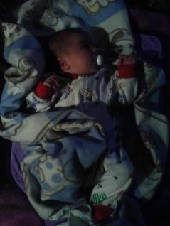 Lilith wenige Tage alt im Dezember 2012